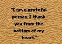 i am grateful thank you status quotes