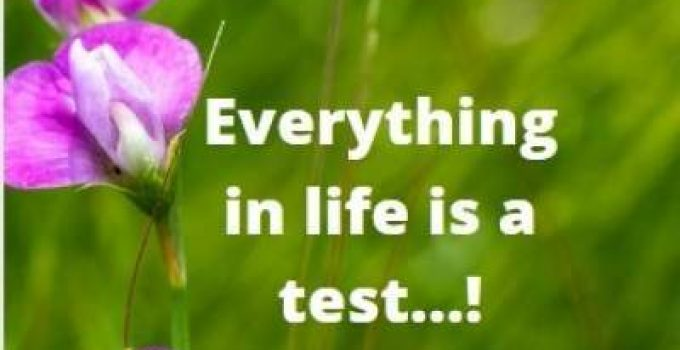 life is a test sms