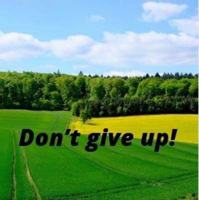 don't give up quotes for whatsapp status