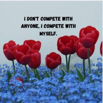 i don't compete quotes fpr whatsapp status