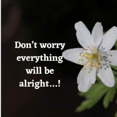 positive status quotes on worry
