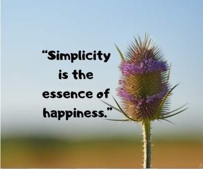 simplicity and happiness status quotes for fb and whatsapp