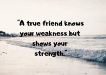 status quotes on friends for fb and whatsapp