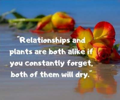 happy relationship status quotes for fb and whatsapp