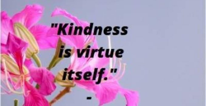 Quotes on kindness is virtue