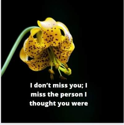 i miss you status quotes for whatsapp