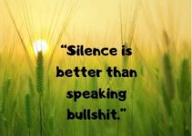 Download silence is better than bullshit status quotes