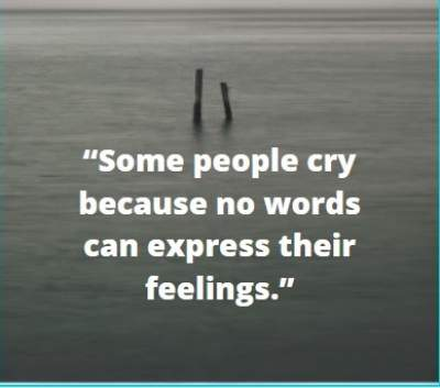 feelings cry status with quotes