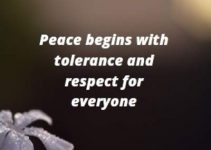 peace quotes for whatsapp status