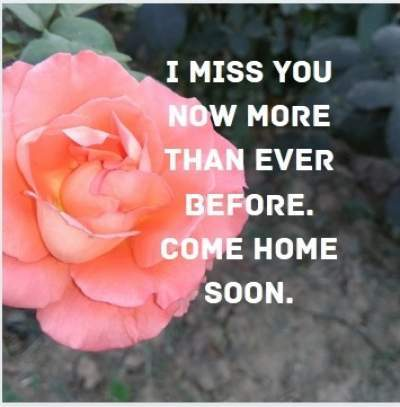 i miss you more than ever status