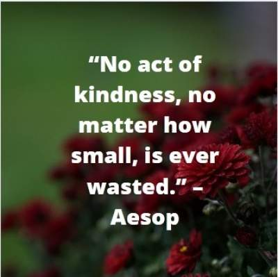 kindness acts quotes for whatsapp status by Aesop