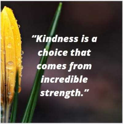 kindness is a choice status quote