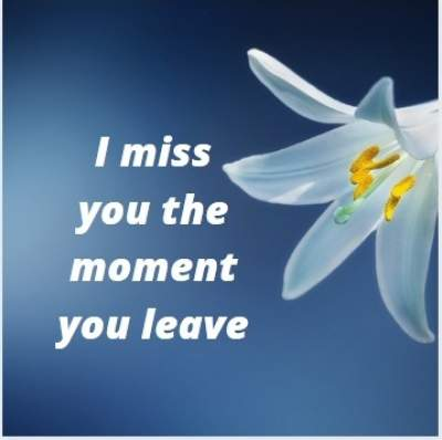 nice status quotes on i miss you