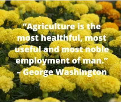 quotes on agriculture employment