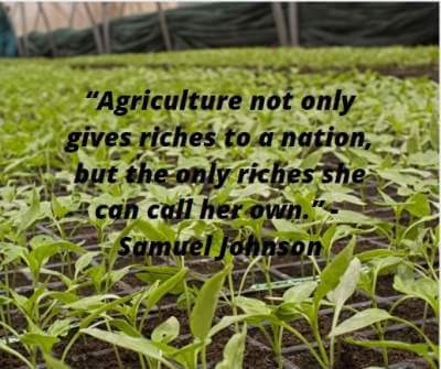 agriculture riches quotes