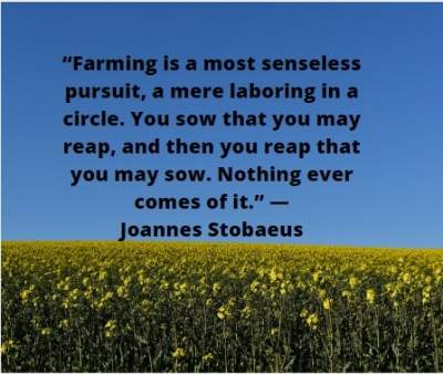 Quotes on Farming is a most senseless pursuit