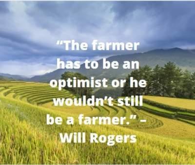 quotes on optimistic farmer